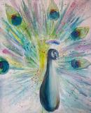 impression-peacock